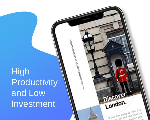 High Productivity and Low Investment